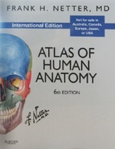 Atlas of Human Anatomy (International Edition), 6e